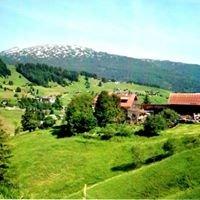 Bio Bergbauernhof Hammerspitze