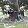 Visit Pollino National Park