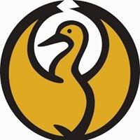 Phoenix Stroke Club