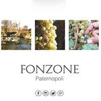 Vino Fonzone