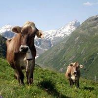 Alp Wallatsch