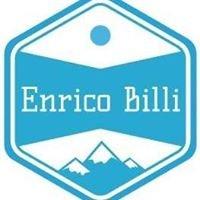 Billi Enrico Consulting
