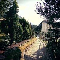 Belvedere -Dolomites Flower Hotel