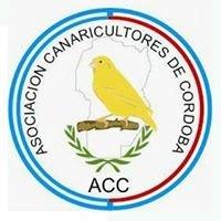 Asociacion Canaricultores de Cordoba