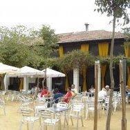 Bar Avelino