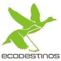 ecodestinos.es