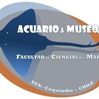 Acuario y Museo - Facultad de Ciencias del Mar