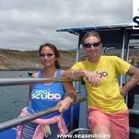 Seascuba Diving In Tenerife