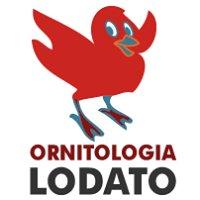 Ornitologia Lodato