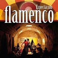 Tablao Flamenco Arte y Sabores de Cordoba