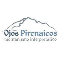 Ojos Pirenaicos Montañismo Interpretativo y Actividades Medioambientales