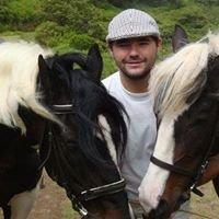 Passeios a cavalo Madeira
