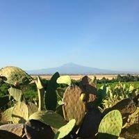 Aranjaya, your Exclusive Hideaway in Sicily, Italy