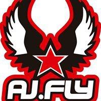 AJfly Parascending