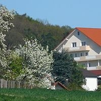Hotel & Restaurant Distlerhof