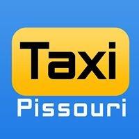 Pissouritaxi.com