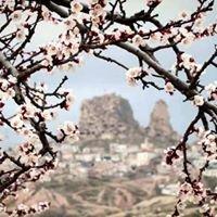 Cappadocia Cave Resort&SPA,CCR Hotels&SPA