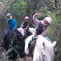 Ferme Equestre de Rouffiac des Corbières
