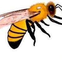 Κέντρο Εξοπλισμού Μελισσοκομείων Μελισσοκομικά Προϊόντα