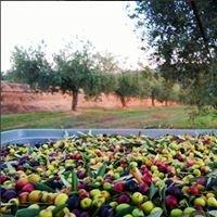 Cooperativa Agrícola de Garcia