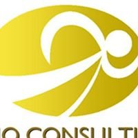 Lerio Consulting Ltd.