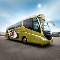 Grupo Stg Bus