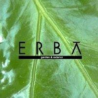 erba graphica エルバ グラフィカ