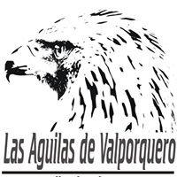 Las águilas de valporquero