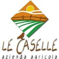 """Azienda Agricola """"Le Caselle"""" di Goffi Gianbattista"""