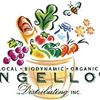 Angello's Distributing Inc.