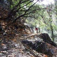 Chantry Flats Hiking Trails