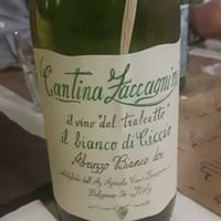 Cantine Zaccagnini