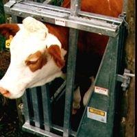 Holdem Cattle Handling Equipment Ltd