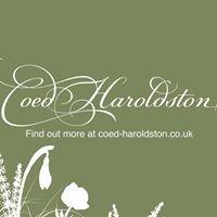 Coed Haroldston