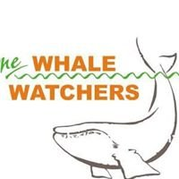 The Whale Watchers