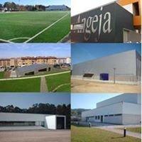 Desporto - Câmara Municipal de Albergaria-a-Velha