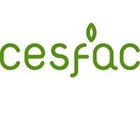 CESFAC