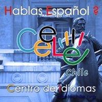 Spanish Lessons in Santiago