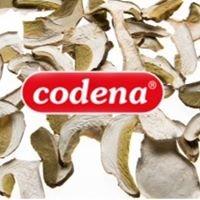 Codena