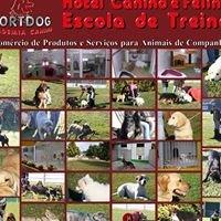 Nortdog Academia Canina de Braga
