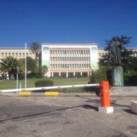 Instituto De Higiene E Medicina Tropical