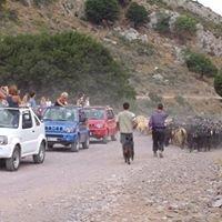De Hollandse jeepsafari op Kreta