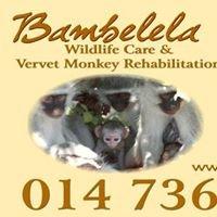 Bambelela- Monkey Guardian Angel Page