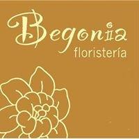 Floristería Begonia