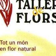Taller de flors