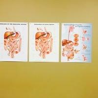 Phillips Gastroenterology