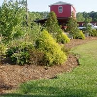 Elevation Plant Nursery & Landscaping Inc.