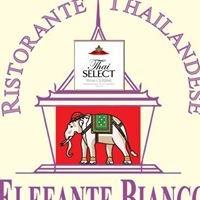 Ristorante Thailandese Elefante Bianco