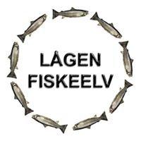 Fiske i Gudbrandsdalslågen