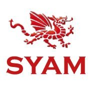 SYAM Stainless Steel Fireplaces, Braai and Toolchests